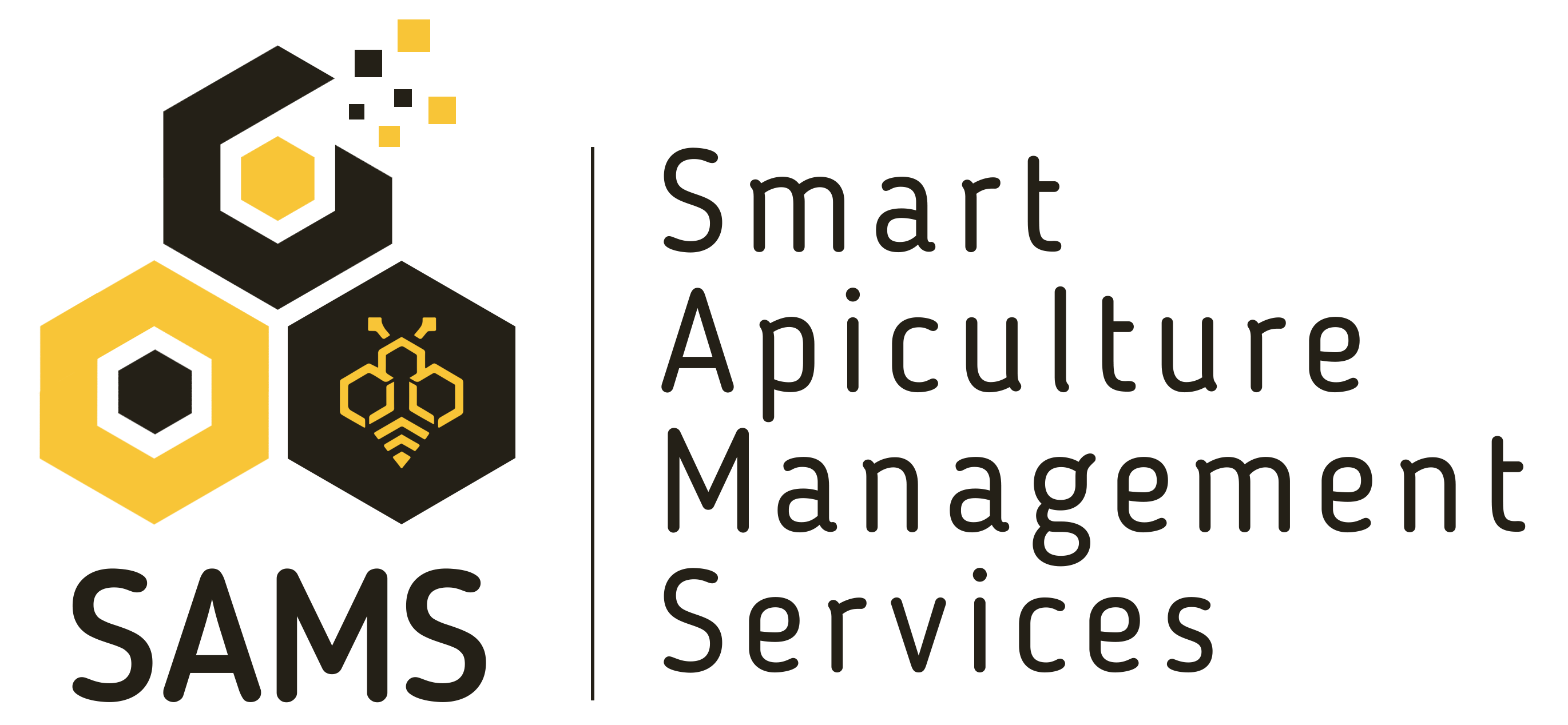 SAMS Project